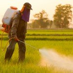 man-spraying-herbicides