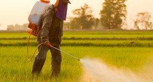 man-spraying-herbicides