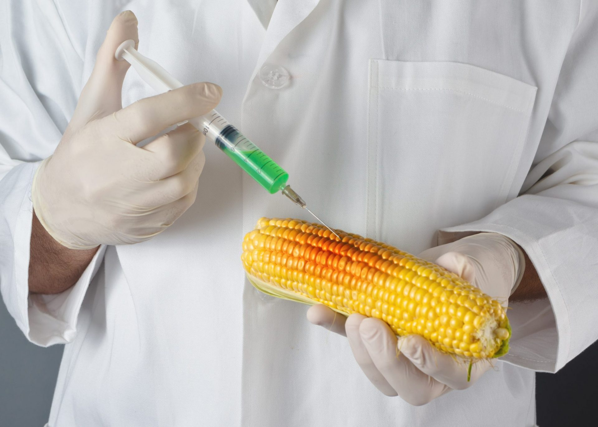 Gmo Dangers Exposed By Soil Scientist