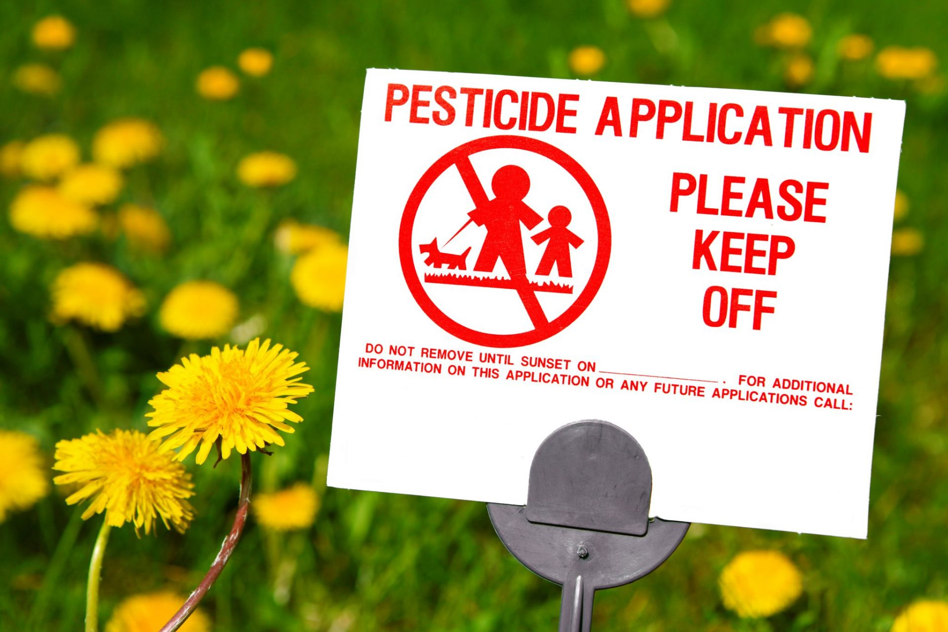 how to avoid pesticides in food