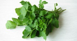 Watercress: A Potent Cancer Fighting Powerhouse | Natural Health 365
