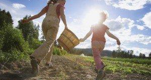 kids on farm
