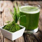 barley-grass