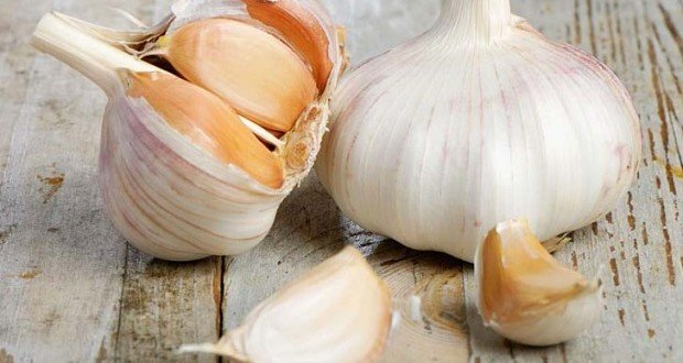 What is aged garlic