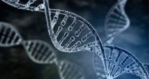 gene-editing