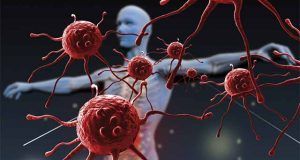 immune-system