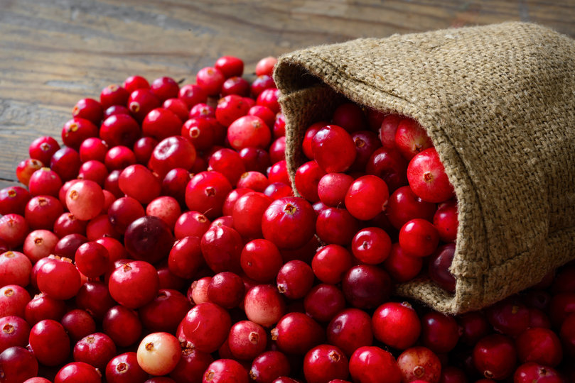 Cranberry seed oil breast cancer pic 757
