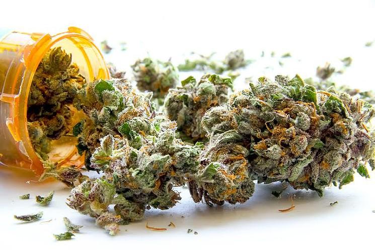 pro health medical marijuana articles