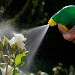 home-pesticide-use