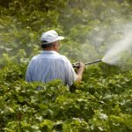 pesticide-drift