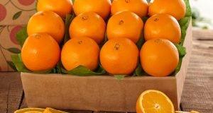 oranges-with-antibiotics