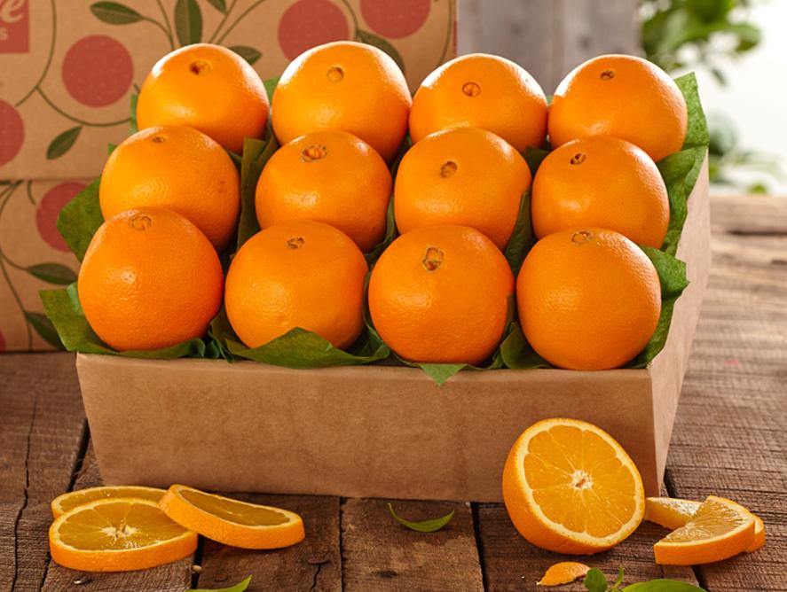Lori Natural Food