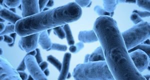 antimicrobial-resistance