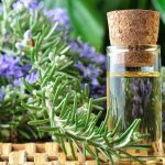 rosemary-essential-oil