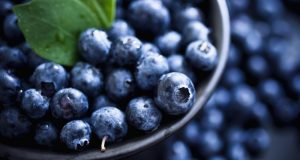 benefits-of-blueberries