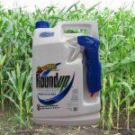 glyphosate-spraying