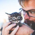 SHOCKING Watchdog Report Claims USDA Involvement in Kitten Cannibalism