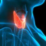 underactive-thyroid