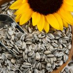 sunflower-seeds-heart-health