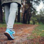 forest-walking-benefits