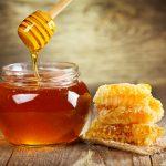 antibacterial-properties-of-honey
