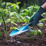 home-fertilizer